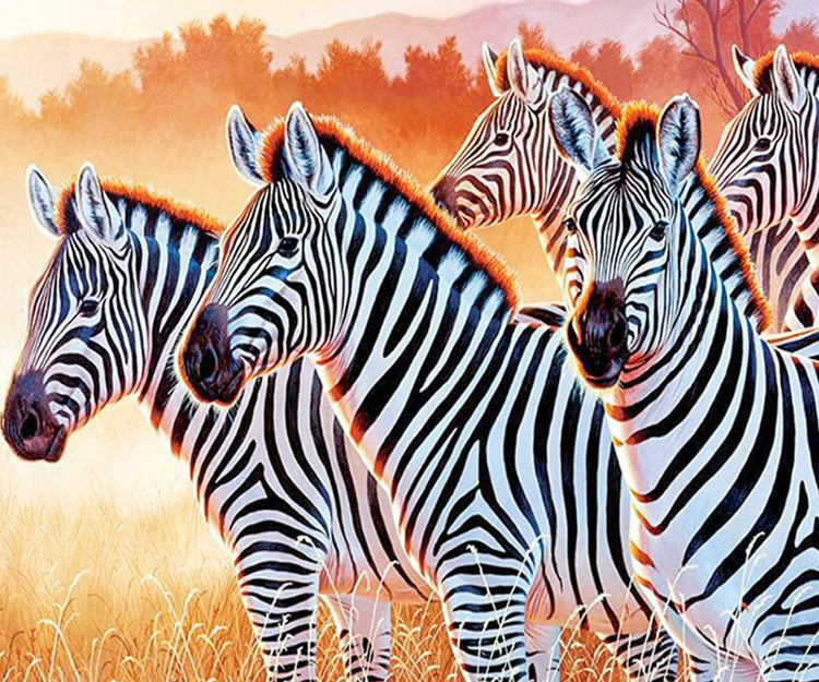 01-51787 Diamond Painting ronde steentjes zebra`s