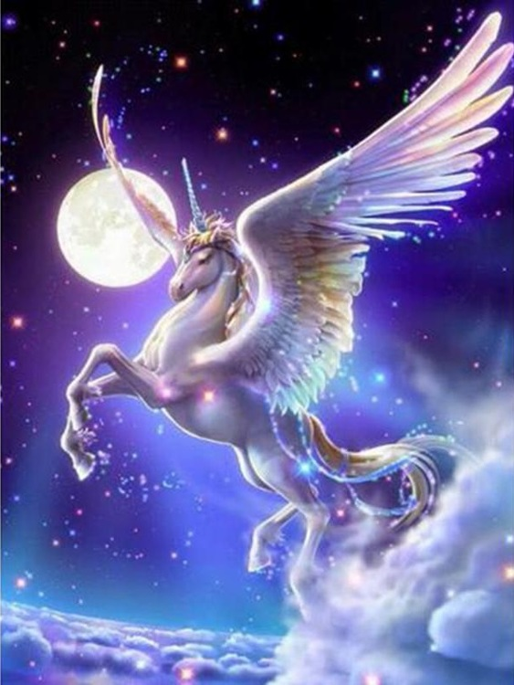 HLQ-01798 diamond painting Unicorn moon 40 x 50