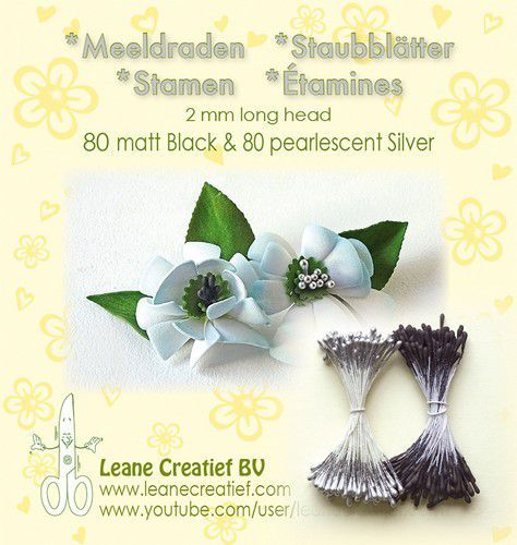Meeldraden 2mm, 80 matt black & ±80 pearl silver