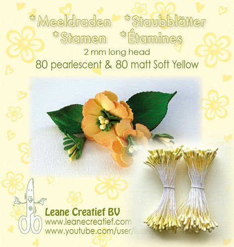 Meeldraden 2mm, 80 matt & 80 pearl soft yellow