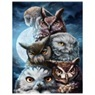 D052 diamond painting uilen 30 x 40