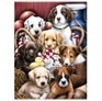 D047 diamond painting honden 30 x 40